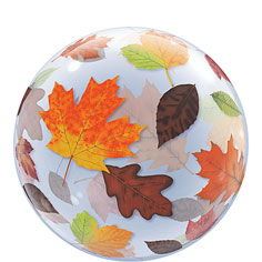 Autumn Leaves Bubble