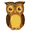 Inquisitive Owl Junior Shape - Uninflated